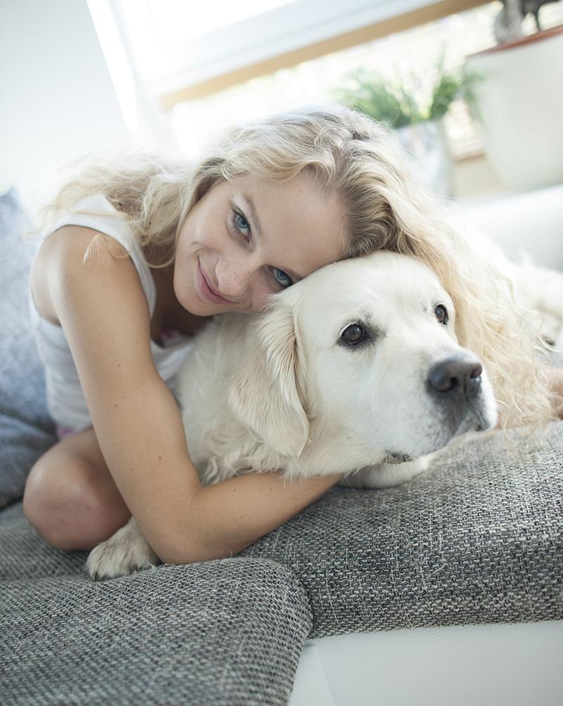 Assurez votre chien